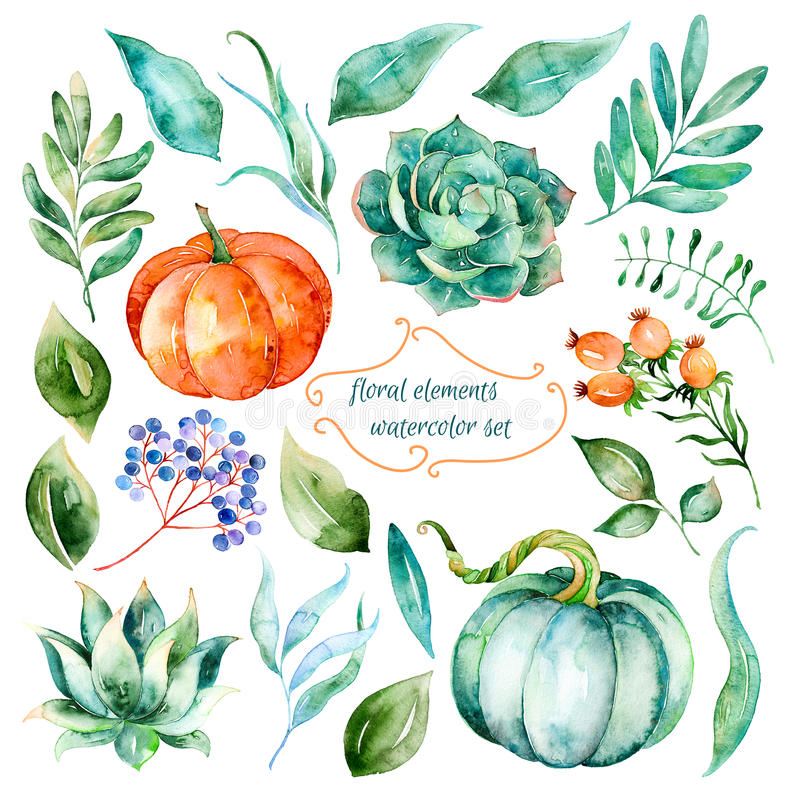 Σύνολο υψηλού - στοιχεία ποιοτικού χρωματισμένα χέρι watercolor για το σχέδιό σας ελεύθερη απεικόνιση δικαιώματος