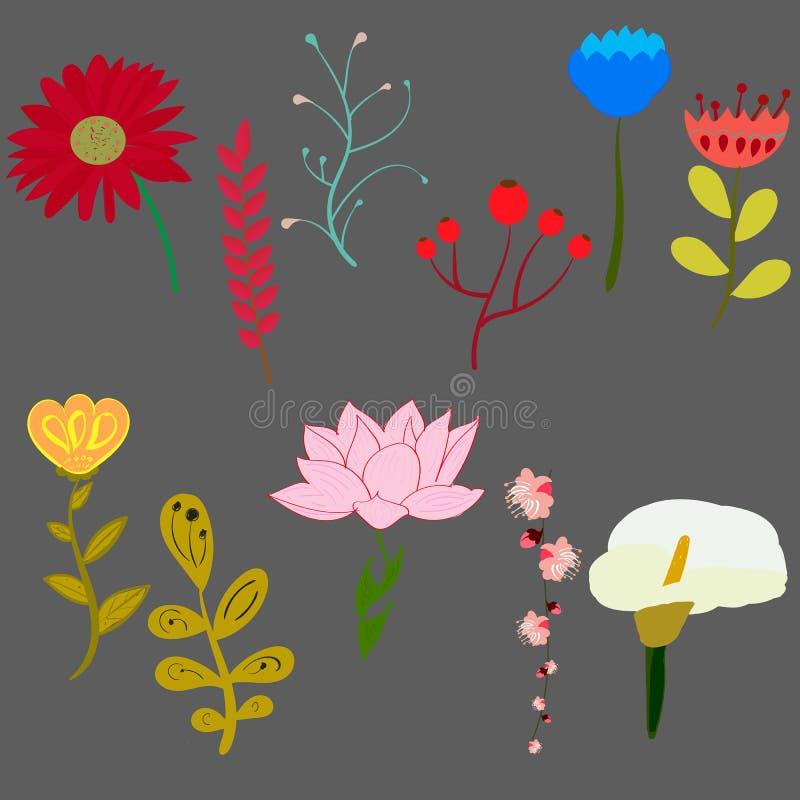 Download Σύνολο φωτεινών διανυσματικών όμορφων λουλουδιών Διανυσματική απεικόνιση - εικονογραφία από χέρια, φυσικός: 62717060
