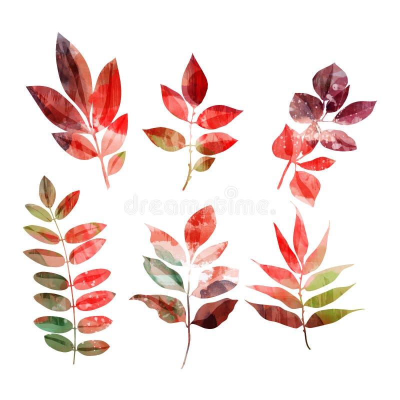 Σύνολο φύλλων φθινοπώρου απεικόνιση αποθεμάτων