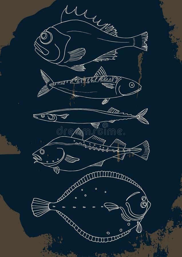 Σύνολο ψαριών θάλασσας διάνυσμα doodle διανυσματική απεικόνιση
