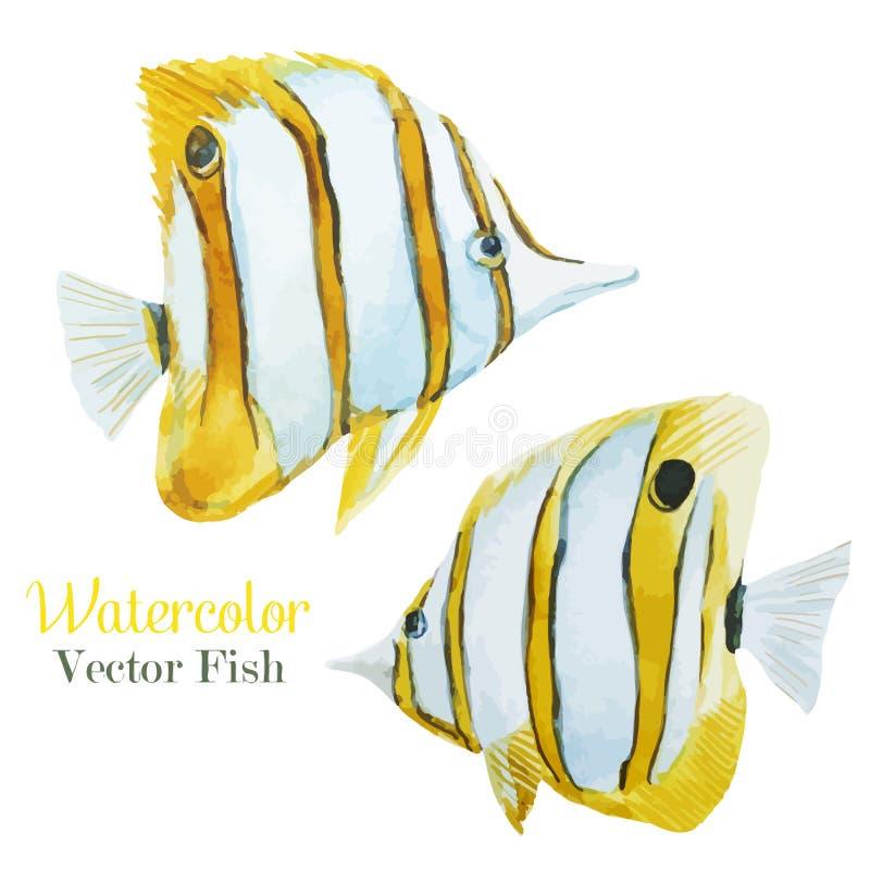 Σύνολο ψαριών διανυσματική απεικόνιση