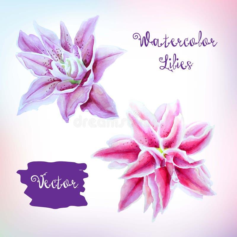 Σύνολο όμορφων τροπικών λουλουδιών watercolor διανυσματική απεικόνιση