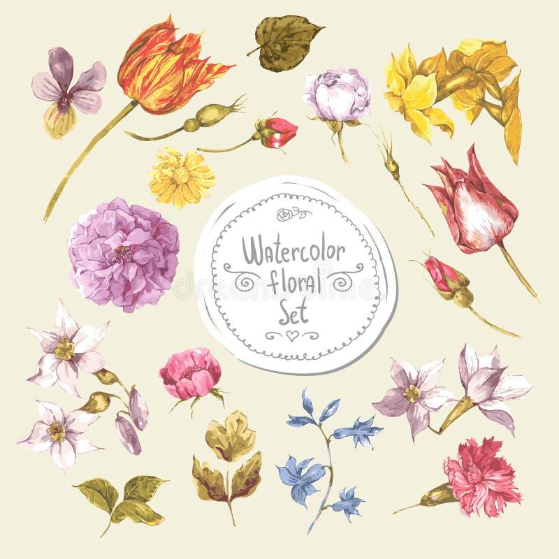 Σύνολο floral στοιχείων σχεδίου watercolor peonies ελεύθερη απεικόνιση δικαιώματος
