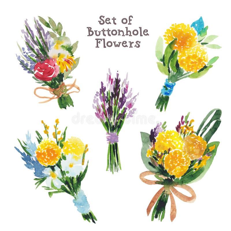 Σύνολο Watercolor buttonhole ανθοδεσμών, μπουτονιέρες, θερινά λουλούδια απεικόνιση αποθεμάτων