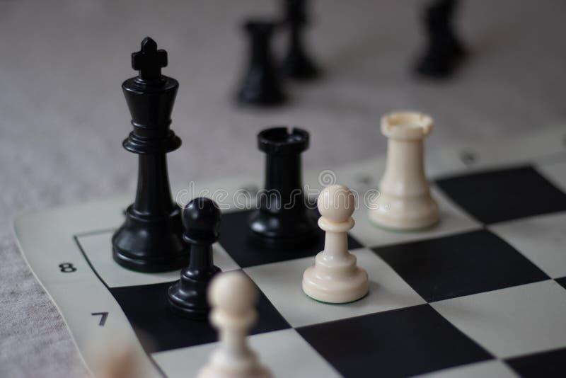 Σύντροφος σκακιού με το κοράκι και το ενέχυρο, ματ! στοκ φωτογραφία με δικαίωμα ελεύθερης χρήσης