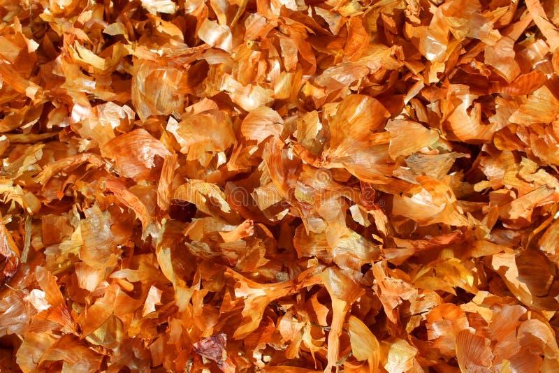 Σύστασης ξηρό κρεμμυδιών υπόβαθρο χρώματος φλοιών χρυσό στοκ φωτογραφία με δικαίωμα ελεύθερης χρήσης