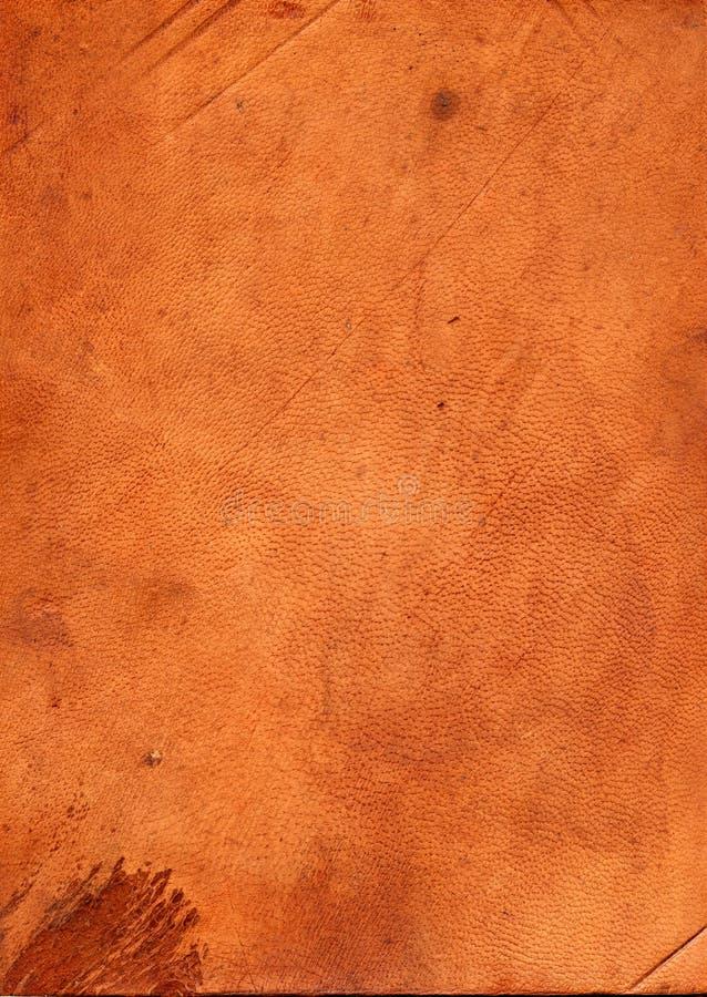 σύσταση δέρματος στοκ φωτογραφία