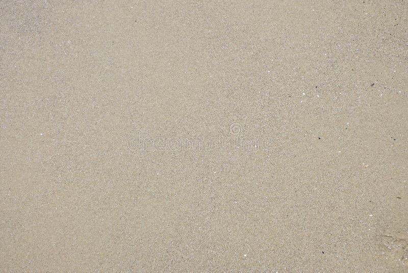 σύσταση θάλασσας άμμου υ στοκ φωτογραφία