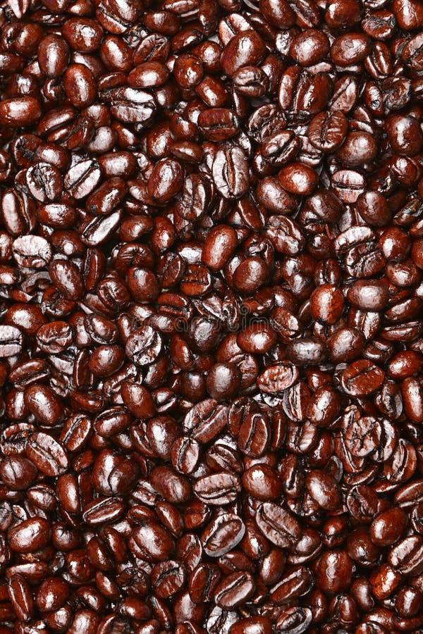 σύσταση καφέ φασολιών στοκ εικόνες
