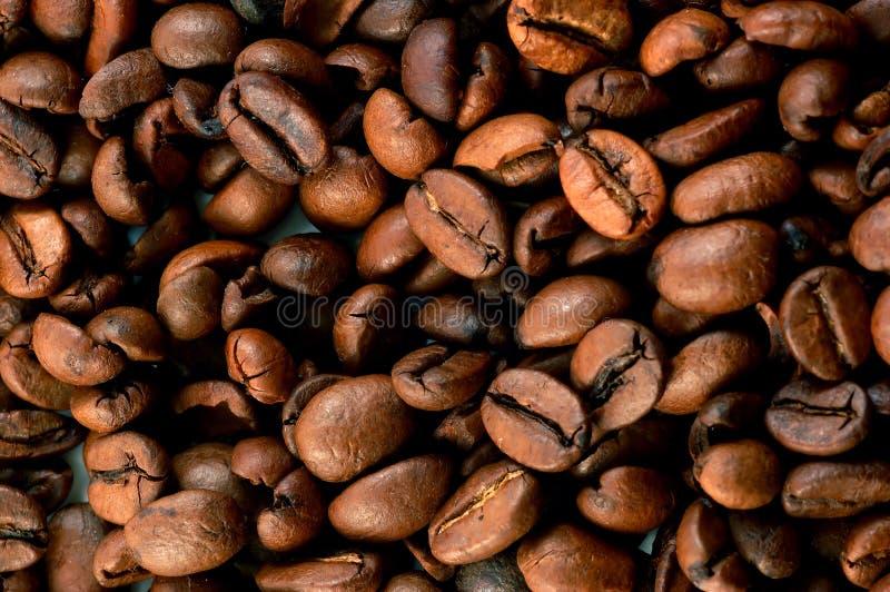 σύσταση καφέ φασολιών στοκ φωτογραφία