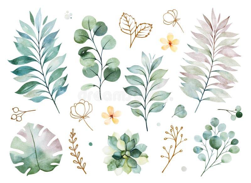 Σύσταση με τα πράσινα, κλάδος, φύλλα, κίτρινα λουλούδια, φύλλωμα απεικόνιση αποθεμάτων
