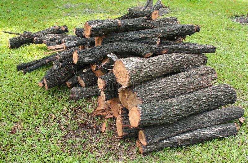 Σύσταση ξυλείας στοκ εικόνες