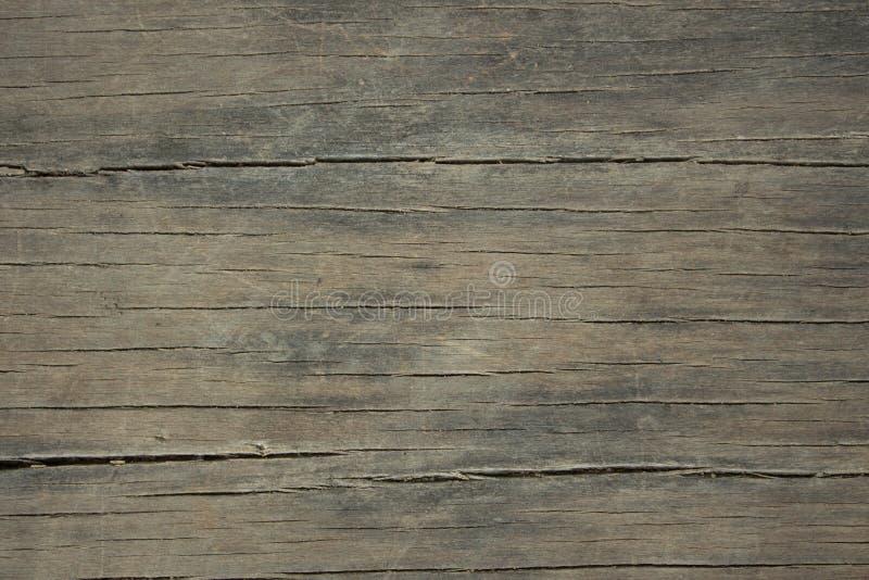 Σύσταση της ξύλινης χρήσης φλοιών ως φυσική ανασκόπηση στοκ φωτογραφία με δικαίωμα ελεύθερης χρήσης