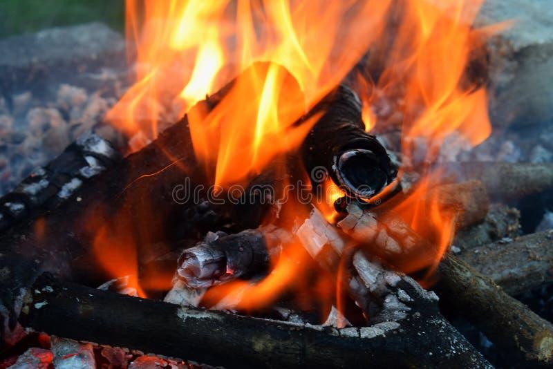 Καίγοντας καυσόξυλο στη φωτιά Φλόγες που καίνε στη σχάρα με τον καπνό Εμπρησμός ή φυσική καταστροφή Σύσταση της πυρκαγιάς και της στοκ φωτογραφία