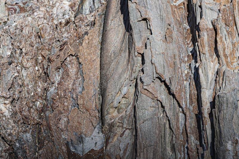 Σύσταση του βαλμένου σε στρώσεις βράχου, τα οποία υπενθυμίζουν στο φλοιό ένα δέντρο στοκ εικόνες με δικαίωμα ελεύθερης χρήσης