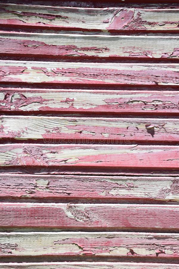 Σύσταση του κόκκινου ξύλου στοκ εικόνα