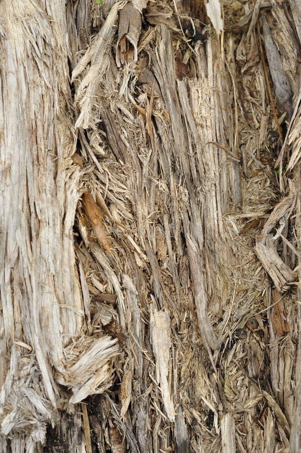 Σύσταση του παλαιού χαλαρού ξύλου στοκ εικόνα με δικαίωμα ελεύθερης χρήσης
