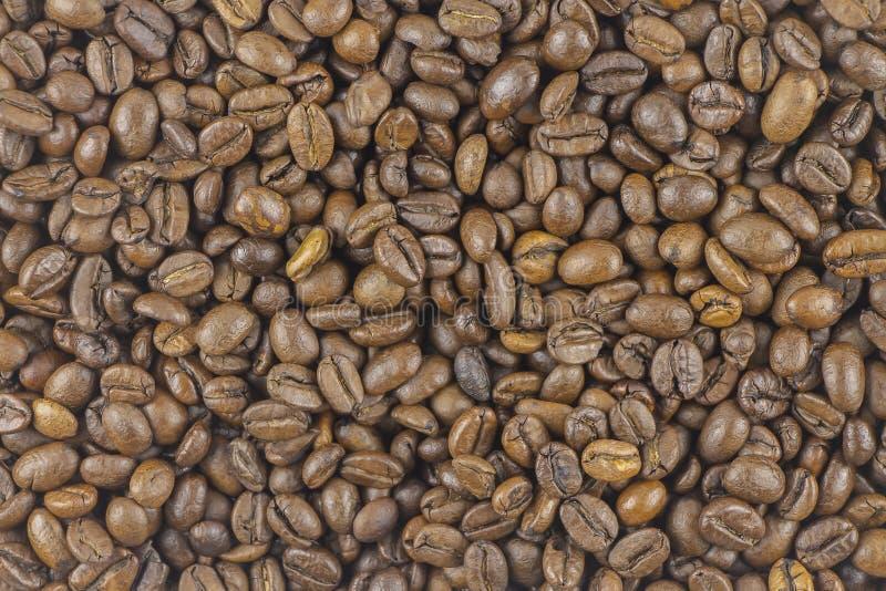 Σύσταση ψημένου έτοιμου να πιει την κινηματογράφηση σε πρώτο πλάνο καφέ στοκ εικόνα με δικαίωμα ελεύθερης χρήσης