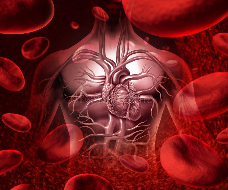 Σύστημα και κυκλοφορία αίματος διανυσματική απεικόνιση