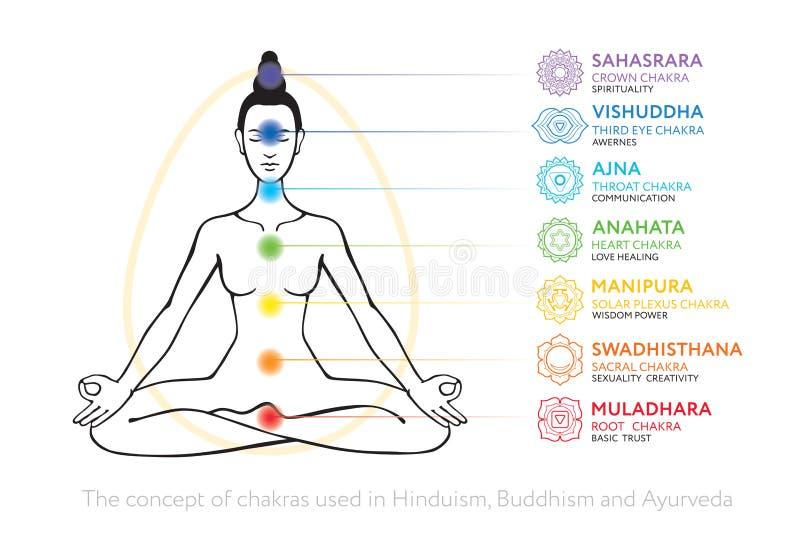 Σύστημα Chakras του ανθρώπινου σώματος - που χρησιμοποιείται σε Hinduism, βουδισμός και Ayurveda απεικόνιση αποθεμάτων