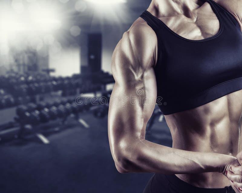 Σώμα γυναίκας bodybuilder στοκ εικόνες με δικαίωμα ελεύθερης χρήσης