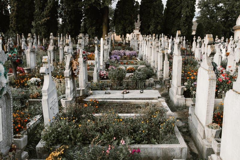 Τάφοι στο cementery στοκ φωτογραφίες με δικαίωμα ελεύθερης χρήσης