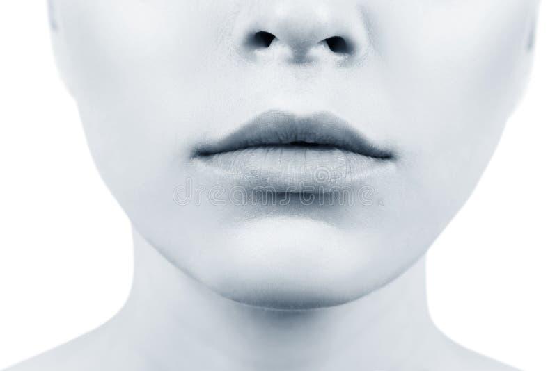 Τέλεια φυσικά χείλια της νέας γυναίκας Κινηματογράφηση σε πρώτο πλάνο στοκ εικόνα