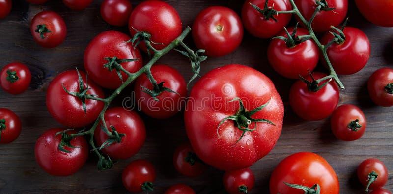Τέλειες φρέσκες διαφορετικές κόκκινες ντομάτες είδους σε έναν κλάδο στο ξύλινο υπόβαθρο άνωθεν στοκ φωτογραφίες