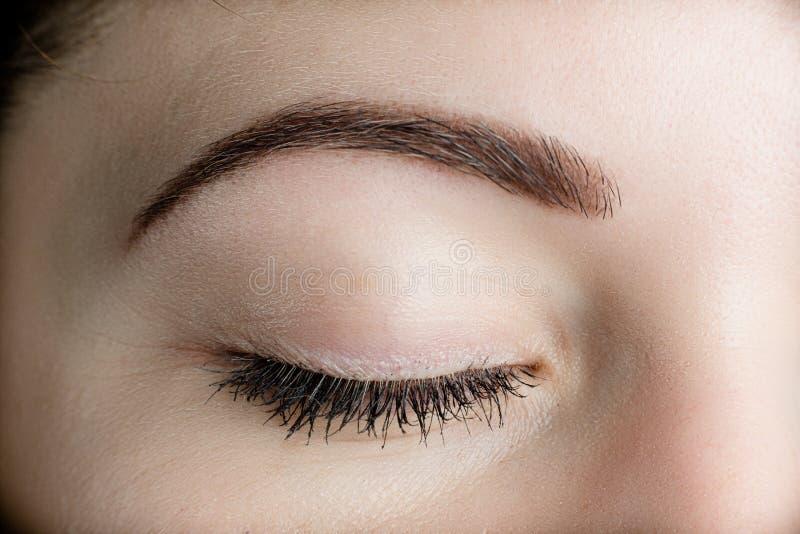 Τέλειο μάτι - brow στοκ φωτογραφία με δικαίωμα ελεύθερης χρήσης