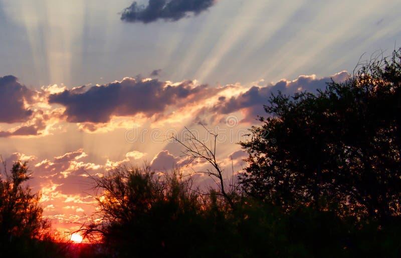 Τέλη Ιουλίου Κολοράντο Dawn στοκ εικόνες