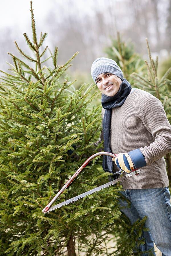 Τέμνον χριστουγεννιάτικο δέντρο ατόμων στοκ φωτογραφία
