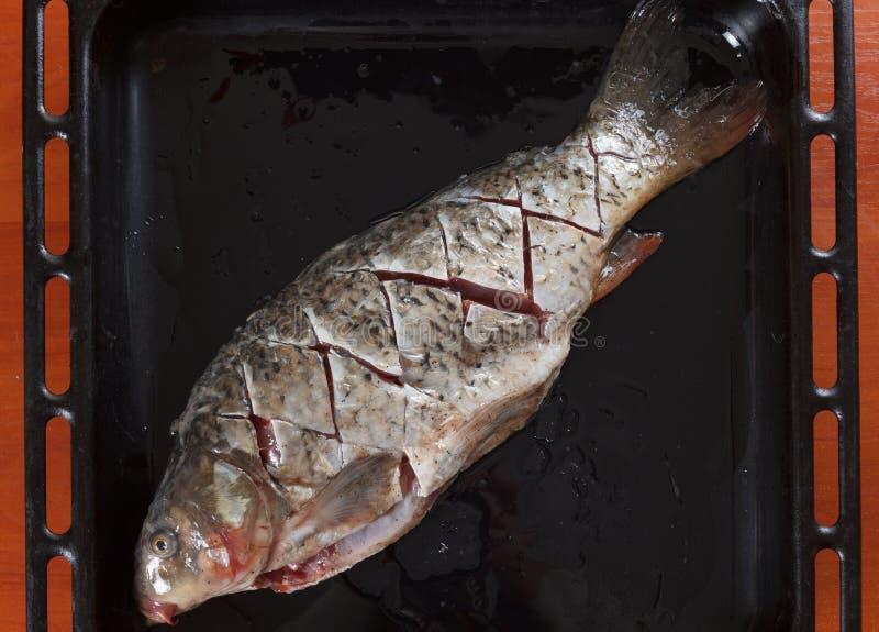 Τέμνων φρέσκος κυπρίνος ψαριών πριν από το ψήσιμο στοκ εικόνες με δικαίωμα ελεύθερης χρήσης