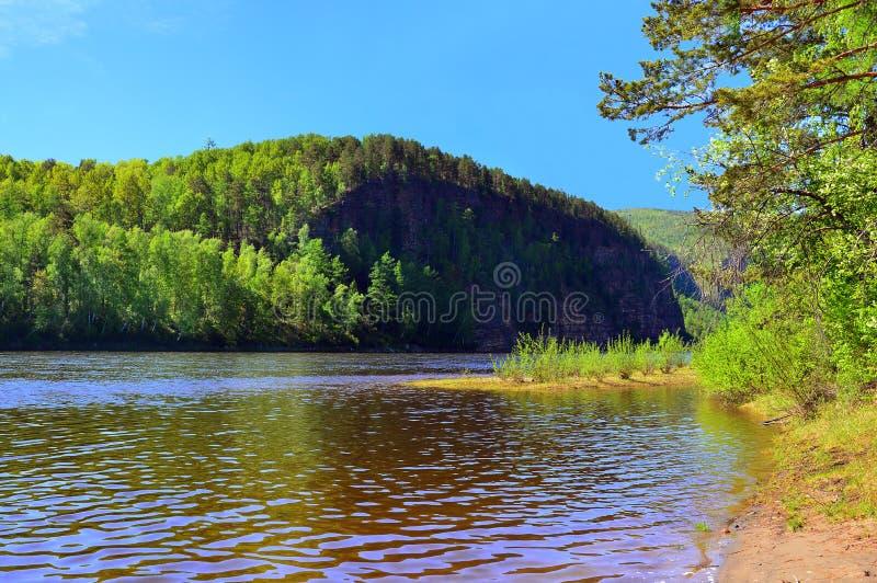 Τέντωμα άμμου Ο ποταμός μακριά στα ξύλα ανθίζοντας δέντρο μήλων Ο ποταμός UDA ο ανατολικός εδώ αυτοκρατορικός γίνοντας σιδηρόδρομ στοκ εικόνα με δικαίωμα ελεύθερης χρήσης