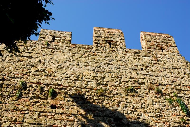 Τέντωμα των αρχαίων τοίχων με το δέντρο στην πόλη Monselice στην επαρχία της Πάδοβας στο Βένετο (Ιταλία) στοκ φωτογραφίες με δικαίωμα ελεύθερης χρήσης
