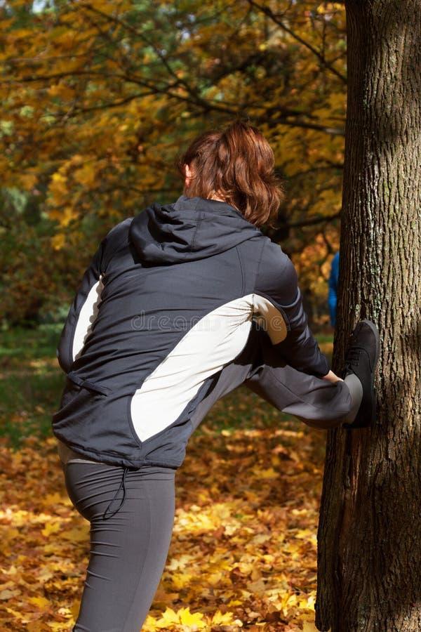 Τέντωμα φθινοπώρου στο πάρκο στοκ εικόνα