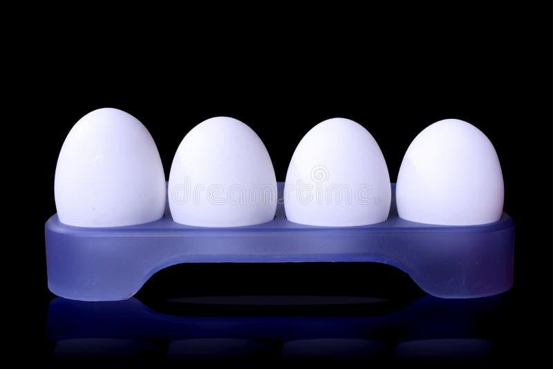 Τέσσερα άσπρα αυγά που απομονώνονται σε ένα trey αυγών στοκ φωτογραφία με δικαίωμα ελεύθερης χρήσης