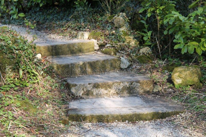 Τέσσερα πέτρινα βήματα στοκ εικόνες με δικαίωμα ελεύθερης χρήσης