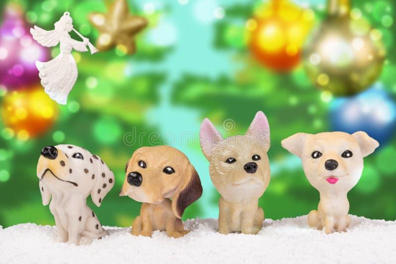 Τέσσερα σκυλιά παιχνιδιών στο χιόνι στοκ εικόνα
