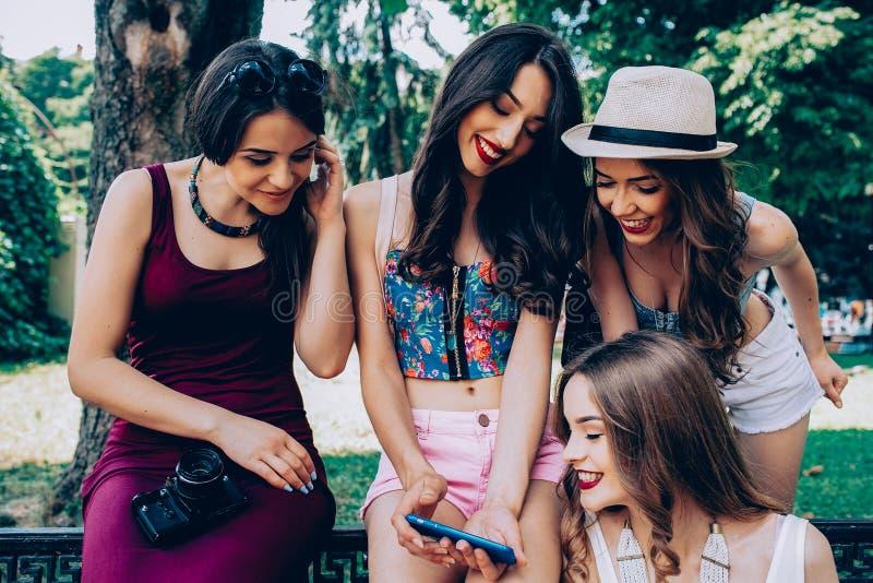 Τέσσερα όμορφα νέα κορίτσια που εξετάζουν τις φωτογραφίες στοκ φωτογραφίες με δικαίωμα ελεύθερης χρήσης