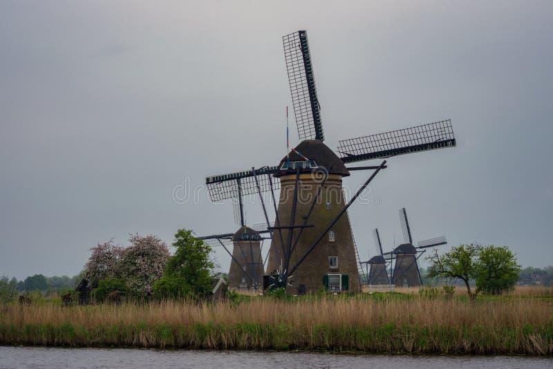 Τέσσερις ανεμόμυλοι σε ένα φυσικό περιβάλλον σε Kinderdijk, Ολλανδία στοκ εικόνα