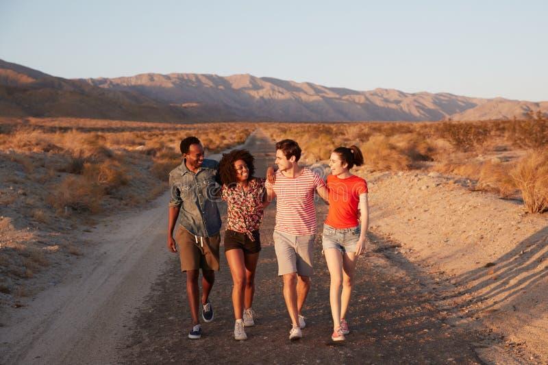 Τέσσερις νέοι ενήλικοι φίλοι που μιλούν καθώς περπατούν στην έρημο στοκ εικόνα