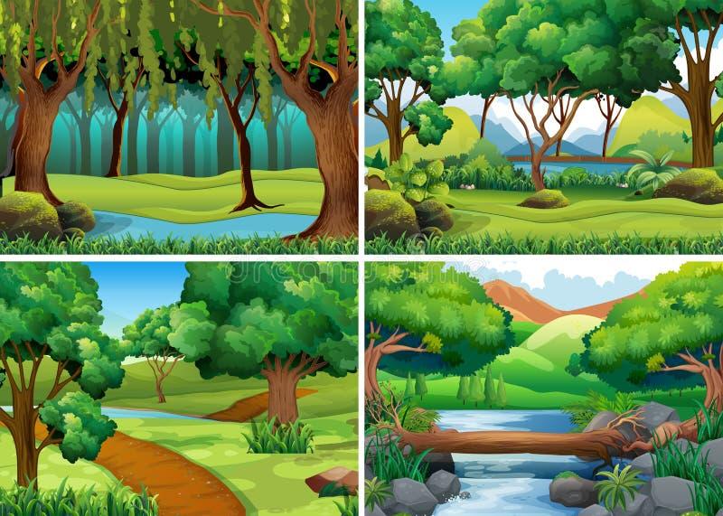 Τέσσερις σκηνές του δάσους και του ποταμού διανυσματική απεικόνιση