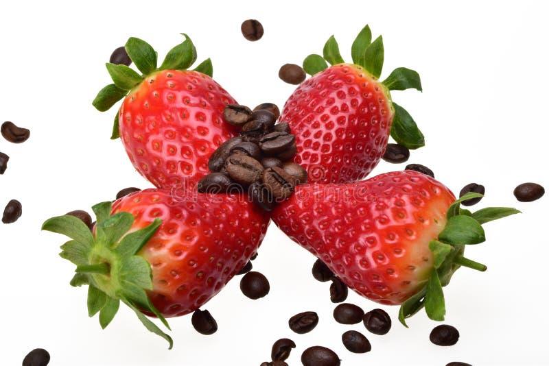 Τέσσερις ώριμες θερινές φράουλες, που ψεκάζονται με τα ευώδη ψημένα φασόλια καφέ στοκ φωτογραφίες