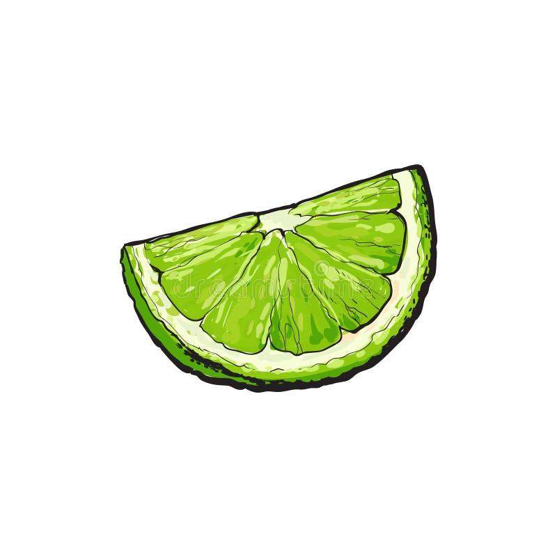 Τέταρτο, τμήμα, κομμάτι του ώριμου πράσινου ασβέστη διανυσματική απεικόνιση