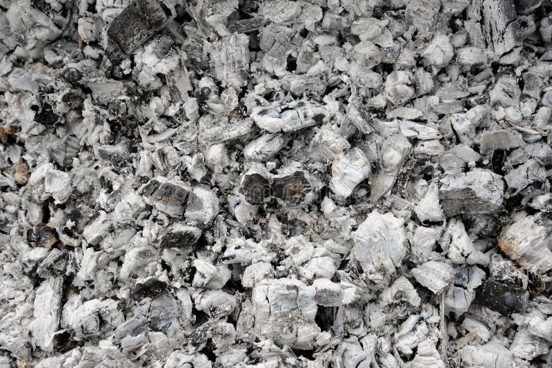 Τέφρα και μμένος άνθρακας στοκ φωτογραφία με δικαίωμα ελεύθερης χρήσης