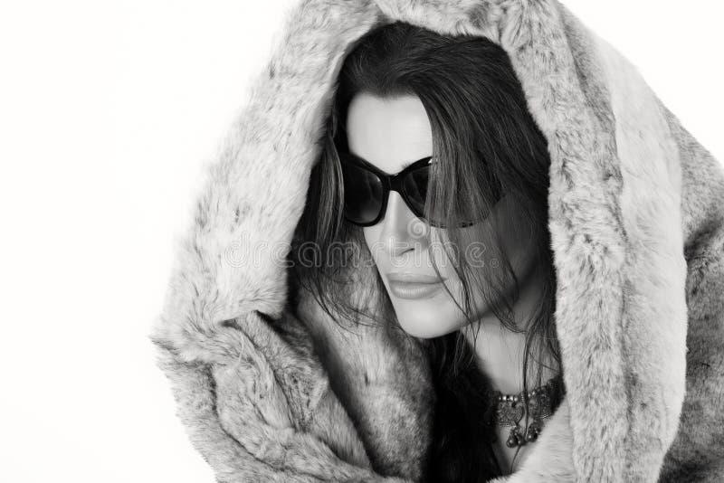 τέχνης ομορφιάς τέλειος χειμώνας makeup μόδας υψηλός βασικός Πανέμορφη καθιερώνουσα τη μόδα νέα γυναίκα στοκ εικόνα με δικαίωμα ελεύθερης χρήσης