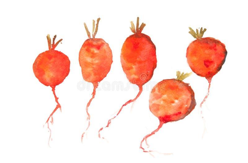 Τέχνη κόκκινων ραδικιών απεικόνιση αποθεμάτων