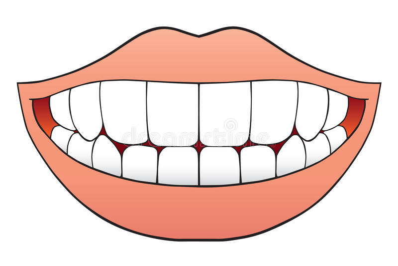 τέλεια δόντια διανυσματική απεικόνιση