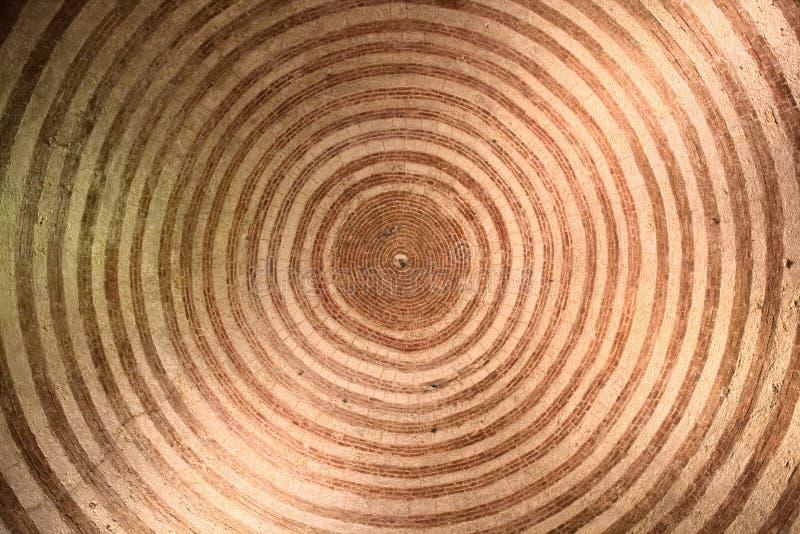 Τέλειοι ομόκεντροι κύκλοι σχεδίου στο ανώτατο όριο του παρεκκλησιού του ιππότη Galgano, πού είναι φρουρημένος το ξίφος του στην π στοκ εικόνες με δικαίωμα ελεύθερης χρήσης