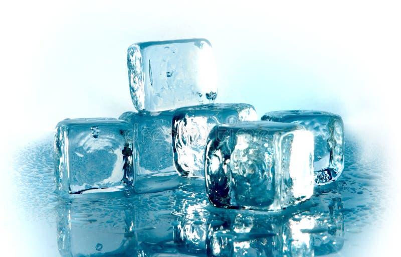 τήξη πάγου κύβων στοκ εικόνες